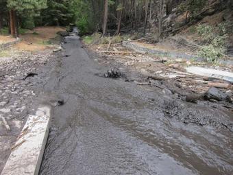 Ash and sedimentation saturating a stream in Las Conchas, New Mexico.