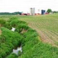 Photo showing a small stream flowing through corn fields in northern Indiana.