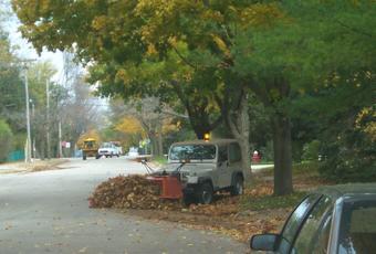 Autumn leaf cleanup