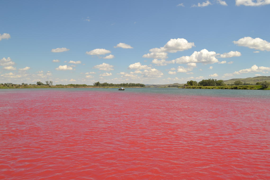 Photo of a red dye-tracer study in June 2016 on theMissouri River near Fort Peck Dam, Montana.